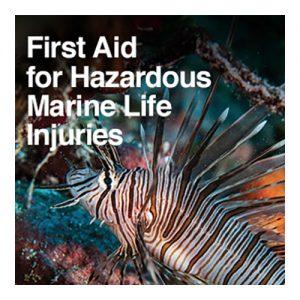 First Aid for Hazardous Marine Life Injuries