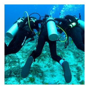 HSA Scuba Instructor Qualification Course